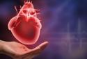 Vì sao cơn đau tim thường gặp hơn ở người trẻ, đặc biệt là phụ nữ?