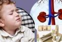 'Thủ phạm ẩn mình' trong bao bì thực phẩm khiến trẻ mắc bệnh thận tăng cao