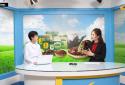 Talk show: Bác sĩ Lưu Chi Mai chia sẻ về phương pháp điều trị bệnh trĩ dứt điểm