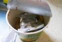 Tìm thấy con sâu bên trong, nhà sản xuất Kay's Cup Pasta lập tức thu hồi sản phẩm