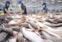 Mỹ giảm thuế cá tra Việt Nam xuống 0%