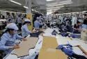 Hàng hóa Việt Nam xuất khẩu vào thị trường Đức đạt 455,03 triệu USD tháng đầu năm