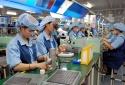 Quý I/2020, Việt Nam có thêm gần 30 nghìn doanh nghiệp mới