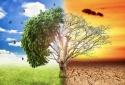 ISO 14064: Giải pháp giải quyết vấn đề biến đổi khí hậu