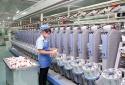 Doanh nghiệp chủ động nâng cao năng suất chất lượng để tận dụng lợi thế từ CPTPP
