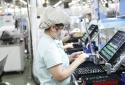 Thu hút dòng vốn FDI theo hướng chọn lọc, bền vững