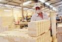 Ngành gỗ Việt trước thách thức truy xuất nguồn gốc