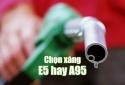 Xăng sinh học E5: Người tiêu dùng hiểu sao cho đúng?