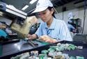 2 nhóm hàng 'kéo' xuất khẩu của Việt Nam đạt tăng trưởng dương