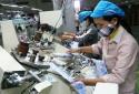 Công ty cổ phần Đông Bình: Phát triển sản xuất gắn với bảo vệ môi trường