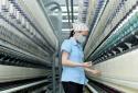 Mỹ khởi xướng điều tra chống bán phá giá sợi dún polyeste của Việt Nam