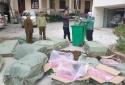 Buộc tiêu hủy gần 1000 kg dược liệu nhập lậu