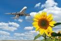3 tiêu chuẩn quan trọng về các chất phát thải máy bay