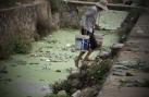 Giật mình khi xem 'rau sạch' được tưới nước thải tại Hà Nội