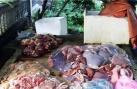 Bắt giữ hơn 1 tạ nội tạng động vật thối chuẩn bị ra chợ Tết
