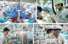 Năng suất lao động Việt Nam ở đáy của khu vực Châu Á