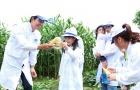 Gia đình MC Phan Anh và BTV Hoài Anh 'quậy' từng bừng tại trang trại bò sữa của Vinamilk