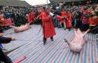 Làng Ném Thượng bức xúc nếu phải bỏ lễ hội chém lợn