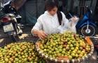 Thị trường Hà Nội: Tràn ngập mận, đào Trung Quốc giả hàng Sapa