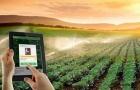 Nâng cao năng suất chất lượng trong nông nghiệp nhờ CNTT