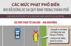 Inforgraphic: Dừng đỗ xe thế nào để không bị phạt?