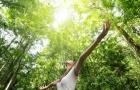 Phụ nữ sẽ sống lâu hơn khi họ được ở gần… nhiều cây xanh