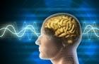 8 thói quen có thể khiến não bộ thay đổi hoàn toàn
