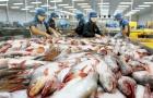 Mỹ kết luận sơ bộ về chống bán phá giá lần thứ 13 đối với cá tra-basa Việt Nam