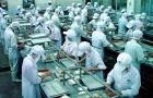 Tại sao doanh nghiệp nên áp dụng tiêu chuẩn ISO 9001:2015?