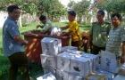 Gia Lai: Phạt 210 cơ sở vi phạm an toàn thực phẩm số tiền 321 triệu đồng