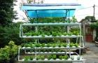 """Tiết kiệm 30% chi phí, tăng năng suất gấp đôi nhờ """"vườn thông minh"""""""