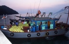 Quảng Ninh: Bắt giữ 8 tàu khai thác hơn 5 tấn thủy sản trái phép