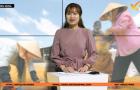 Bản tin Tiêu dùng: Thị trường gạo xuất khẩu đang diễn biến tích cực
