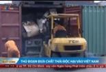 Thủ đoạn nhập khẩu phế thải độc hại vào Việt Nam