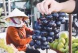TP.HCM: Hoang mang trái cây giá rẻ không rõ nguồn gốc