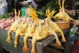 Vạch trần các thủ đoạn 'phù phép' cho thịt gà, bò tươi ngon