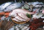 1/3 số mẫu hải sản dương tính với formol, hàn the