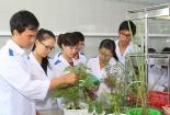 Đẩy mạnh phát triển, ứng dụng công nghệ sinh học