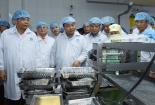 Thủ tướng thăm cơ sở sản xuất tôm có 'giấc mơ' 2 tỷ USD