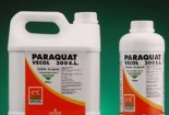 Cảnh báo tử tự bằng thuốc giệt cỏ có chứa Paraquat