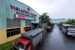 Viglacera Hạ Long: Nhiều công nhân làm cả năm, Tết cũng không được nghỉ