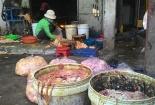 Bắt quả tang hơn 1 tấn mỡ lợn bẩn chuẩn bị 'bung' ra thị trường