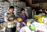 Giải pháp cấp bách trong quản lý chất lượng vật tư nông nghiệp