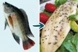 9 loại cá không nên ăn nếu sức khỏe tốt