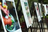 Ngày của cha đầy ý nghĩa với triển lãm ảnh của sinh viên Báo chí