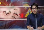 Bản tin Cảnh báo chất lượng: Những diễn biến mới nhất của dịch sốt xuất huyết