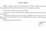 Công ty TNHH Thương mại Vision Việt Nam bị phạt 25 triệu đồng