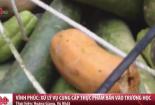 Phát hiện gần 100kg thực phẩm bẩn được đưa vào trường học