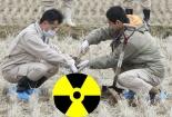 Hải Phòng: Xử phạt 3 cơ sở vi phạm pháp luật về năng lượng nguyên tử