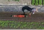 Trồng cả vườn rau trong vài phút với chiếc máy 24 triệu đồng